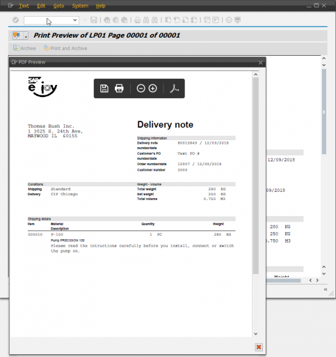 PDF generated from SAP print preview
